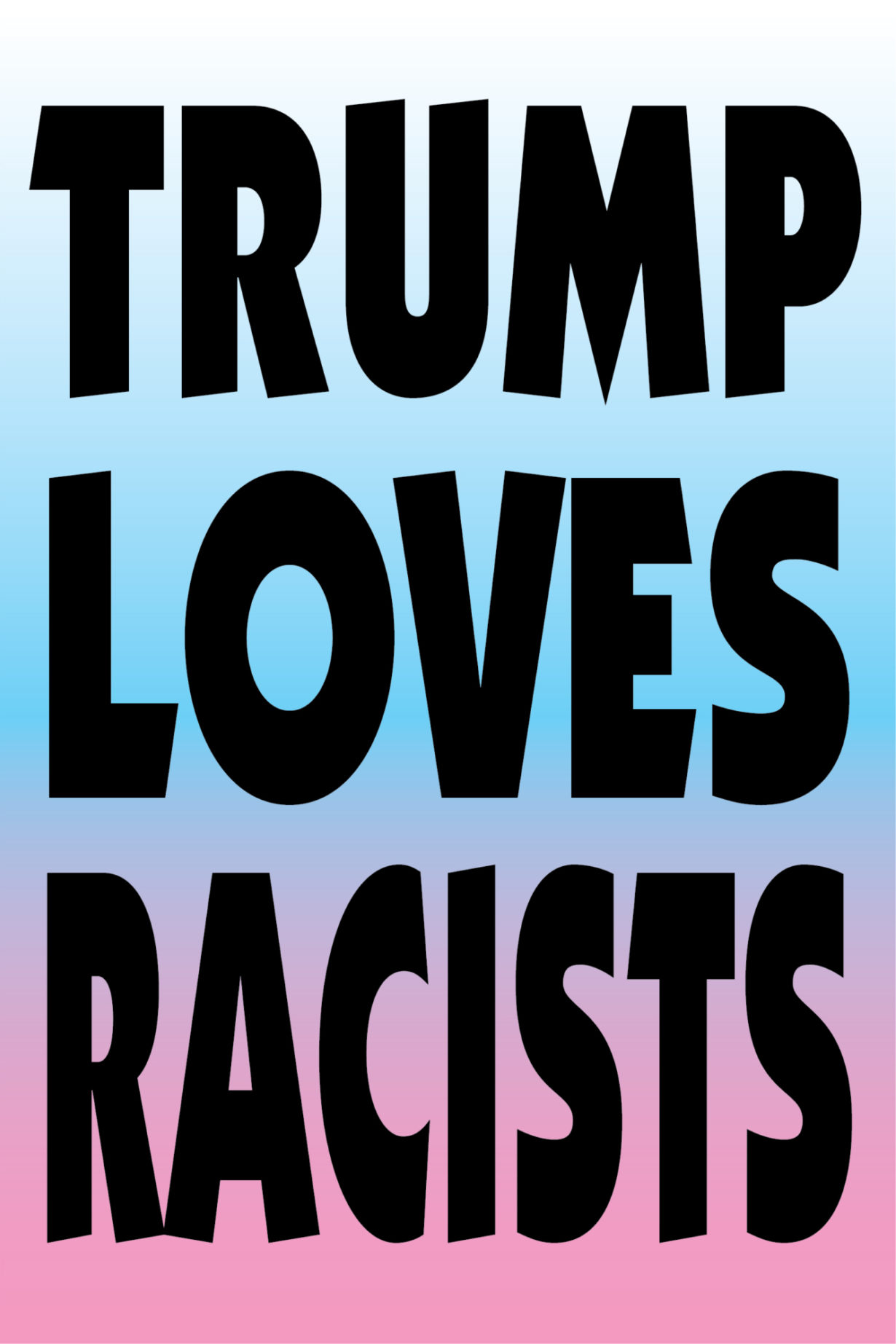 NP_01_25_2017_Trump-Loves-Racists.jpg