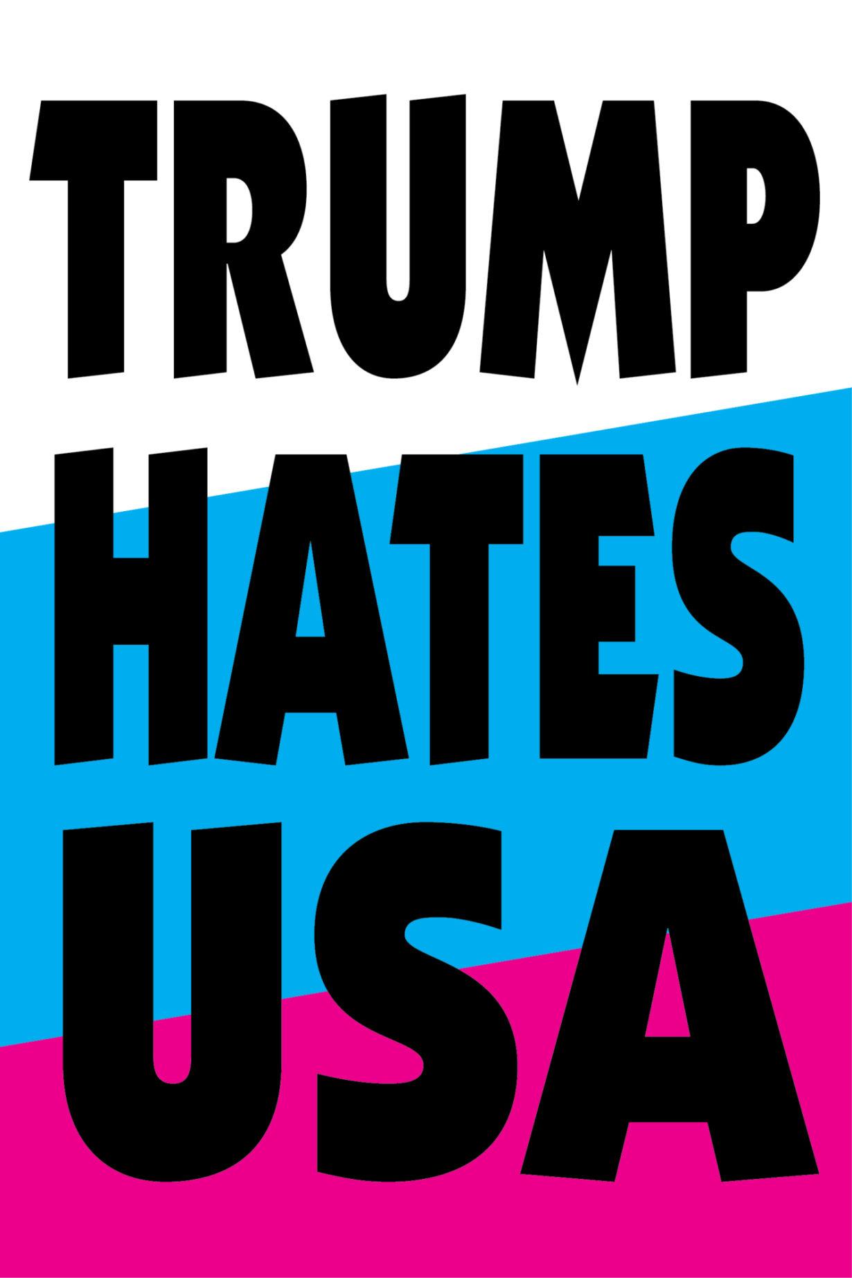NP_26_50_2017_Trump-Hates-USA.jpg