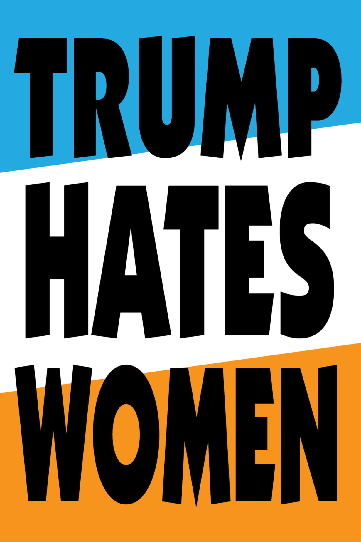 NP_26_50_2017_Trump-Hates-Women.jpg