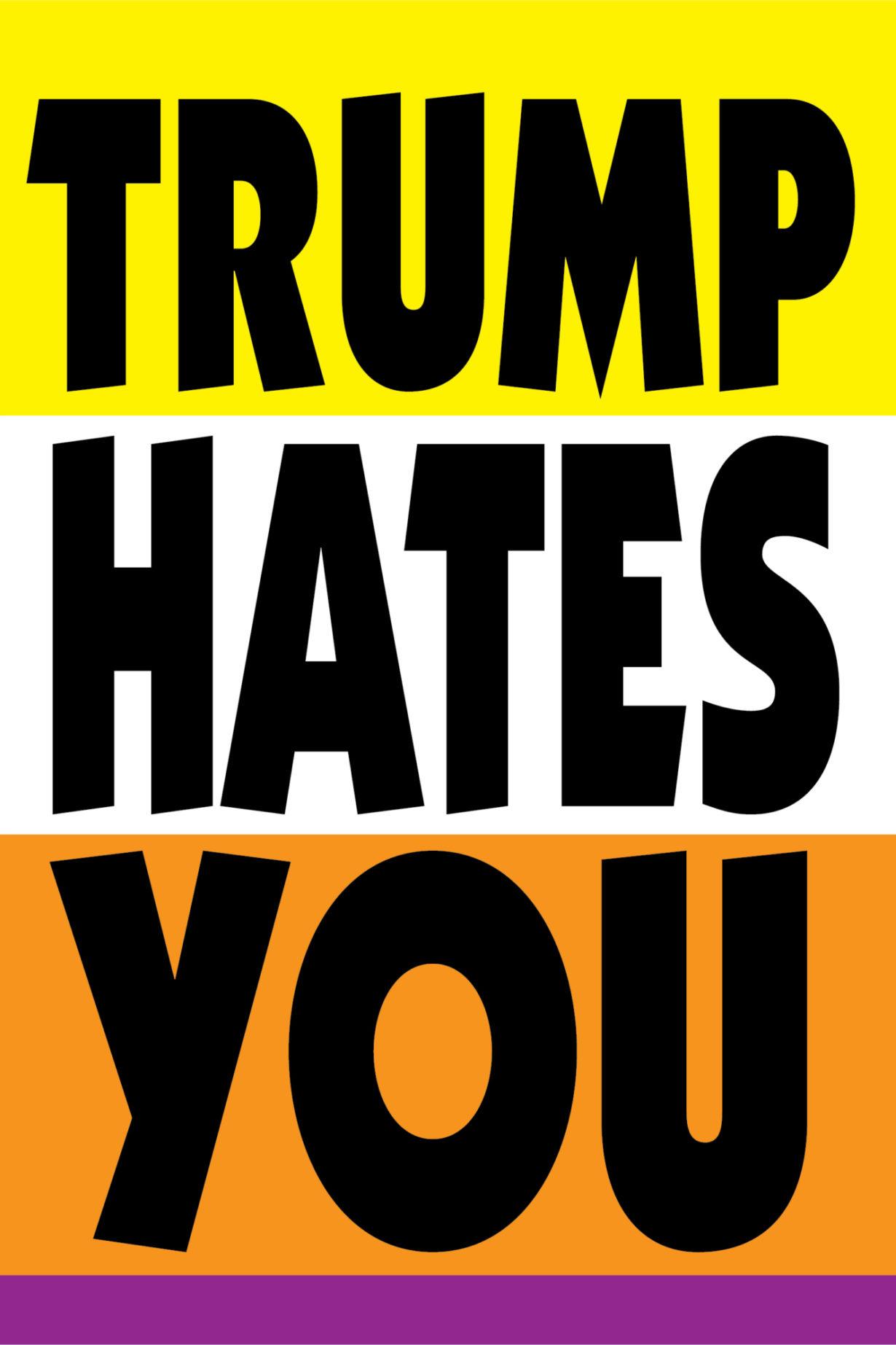 NP_26_50_2017_Trump-Hates-You.jpg
