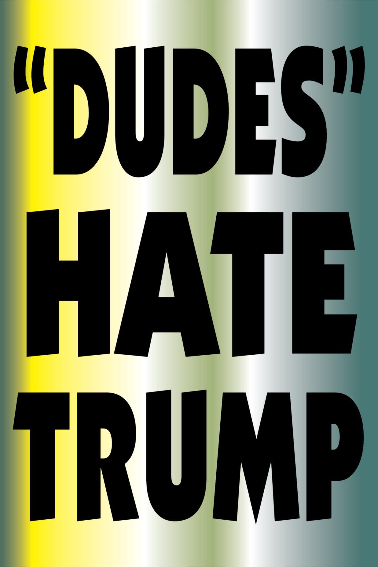 NP_51_75_2017_Dudes-Hate-Trump.jpg