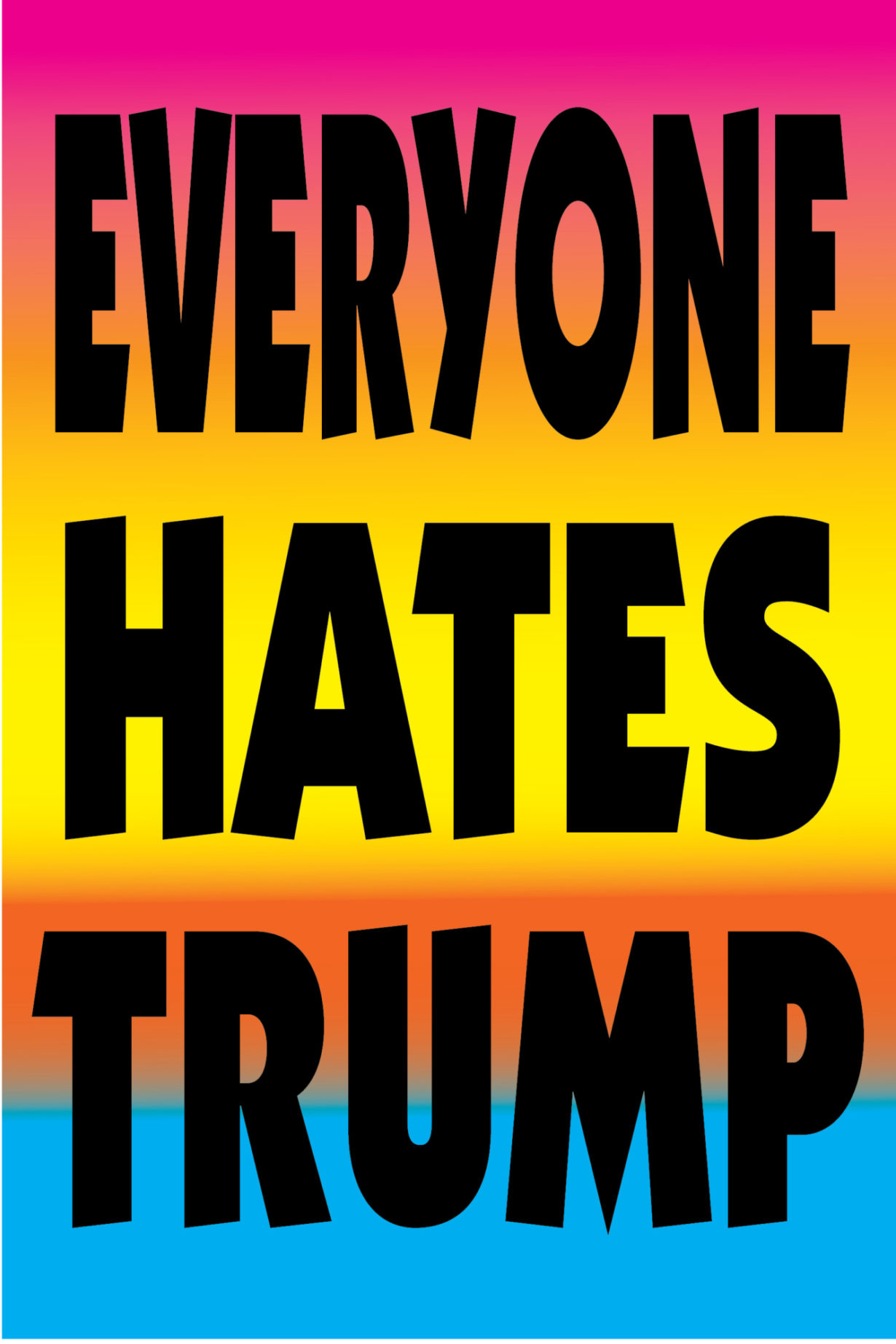 NP_76_100_2017_Everyone-Hates-Trump.jpg