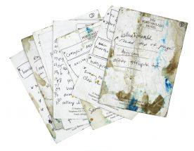 Speech Notes